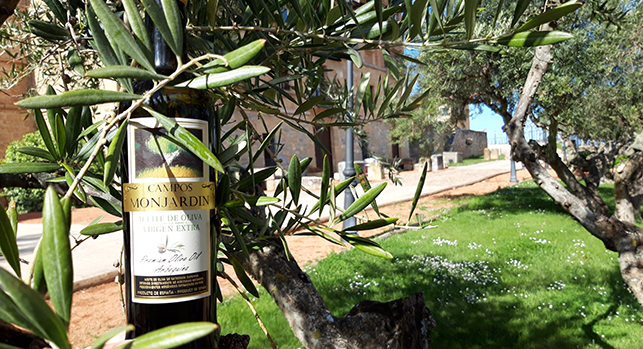 Spanish Olive Oil Virgen Extra Campos Monjardin